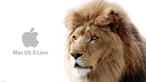 mac_os_x_lion_wallpaper_1-2