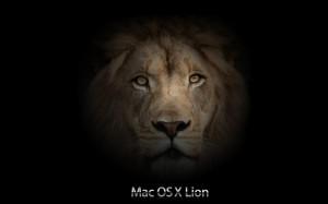 mac_os_x_lion_wallpaper_1 (6)